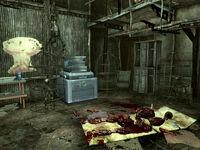 Raider Theme downstairs