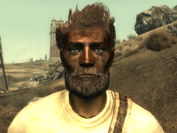 FO3Wasteland doctor2