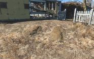 FO4 Sanctuary graves