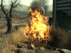 Burned wastelander.jpg