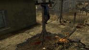 FNV bark scorpion killing Powder Gangers