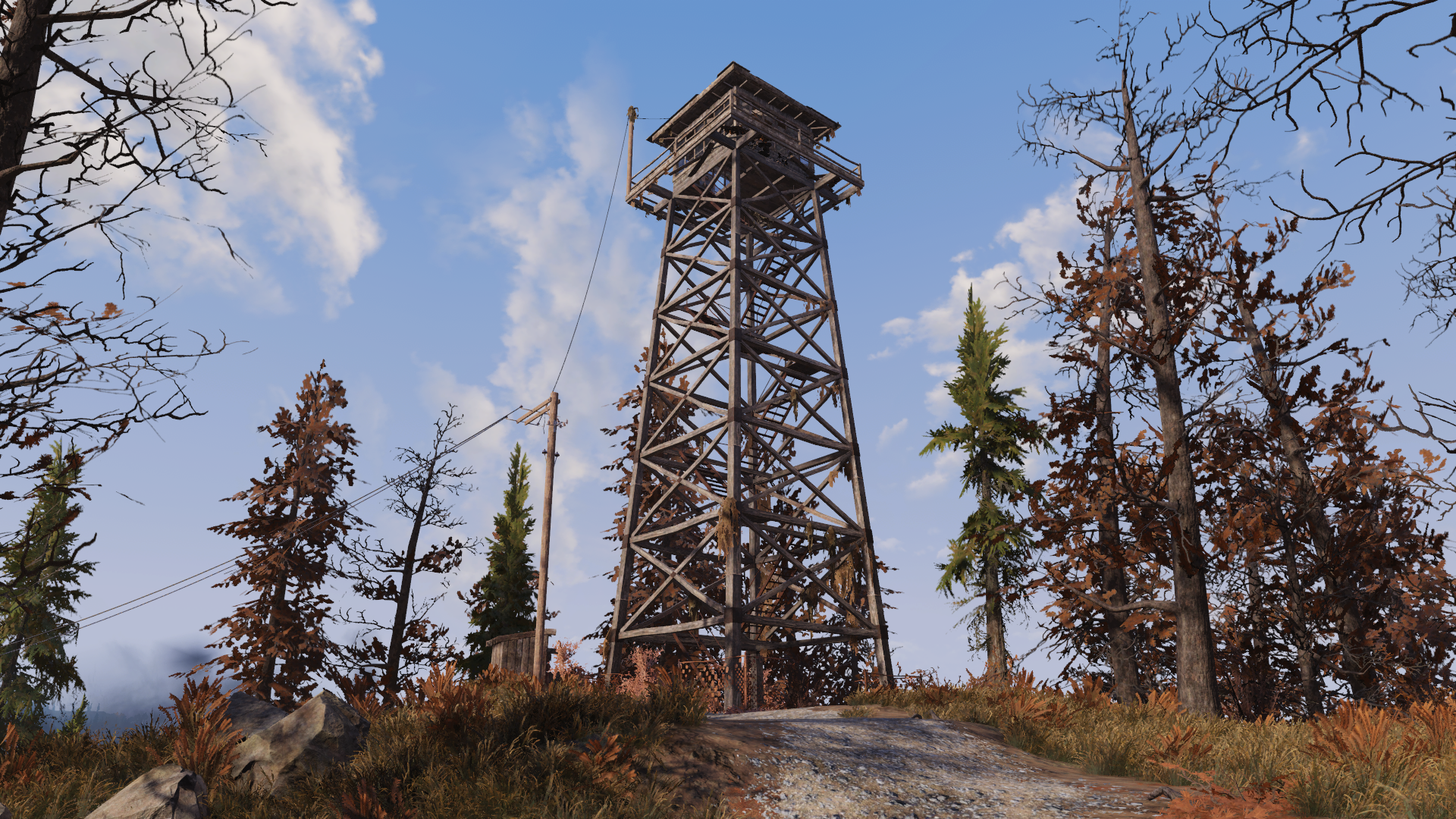 Whitespring lookout
