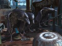 Fallout 4 Crows