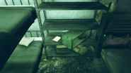 FO76 Fort Defiance (No way out)