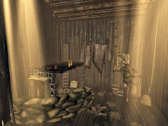 Bradley's shack interior.jpg