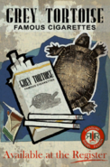 FO4NW Grey Tortoise poster