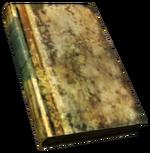 FNV BurnedBook03.png