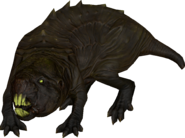 FO76 creature molerat 03