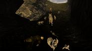 FNV Coyote den 2