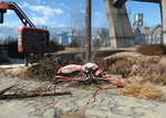 FO4 Red widow bloodbug.png