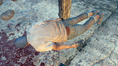 FO4NW Lucky.png