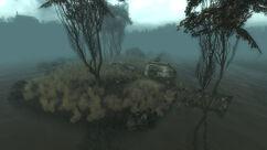 Flooded Sinkhole.jpg