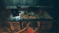 FO76WL Watoga Underground clown desk