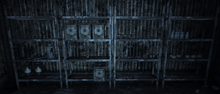 Ammoboxes charleston cave