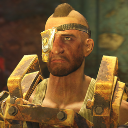FO4NW Porter Gage1.png