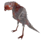 Fo4-radgull-transparent.png