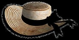 Vikkis bonnet.png