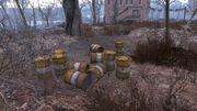 Fo4 Radioactive Barrels.jpg