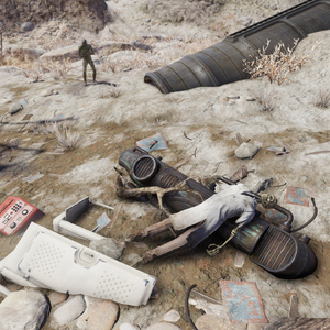 FO76 Crashed space station (scientist).png