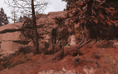 FO76 secluded cave exterior.png