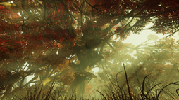 FO76 Treetops.png