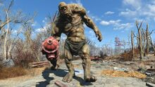 FO4 Super Mutant Ancient behemoth
