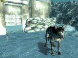 Сторожевая собака (Operation: Anchorage)