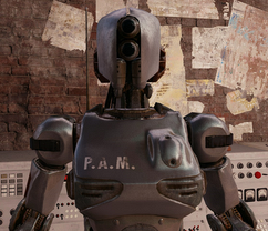 P.A.M.-1-.png