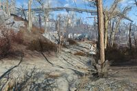 FO4 Forest Marsh speed limit