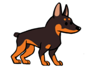FOS Dog7