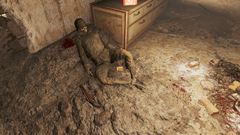 FO4 Sgt. Reise's holotape.png