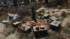 Fo76 Pumpkin house (Trick or Treat).jpg