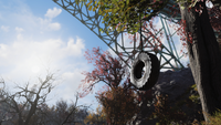 FO76 Tire swing New River Gorge Bridge