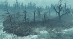 FO4 FH Cranberry Island.png