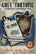 FO4 advertsposter Grey Tortoise