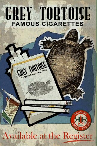 Grey Tortoise