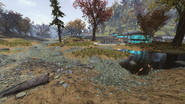 FO76 Flatwoods River 4