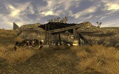 Snyder Prospector Camp.jpg