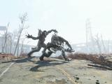 Коготь смерти (Fallout 4)