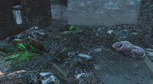 MongrelsPack-Fallout4