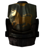 Armor of the 87th tribe back