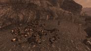 FNV Forlorn Hope graveyard with dbm