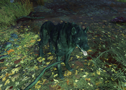 Fo76 Wolf.png