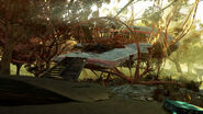 FO76 crashed plane (13)