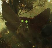 FO76 creature mothman Reconnoiter 01.png