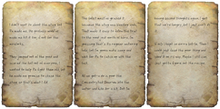 Young hunter's diary.png