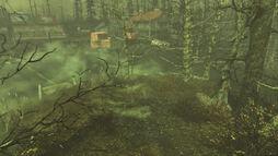Echo Lake Lumber bunker entrance.jpg