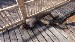 FO76 Colonel.png
