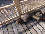Survivor story: Responder Colonel