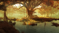 FO76 Gnarled shallows.png